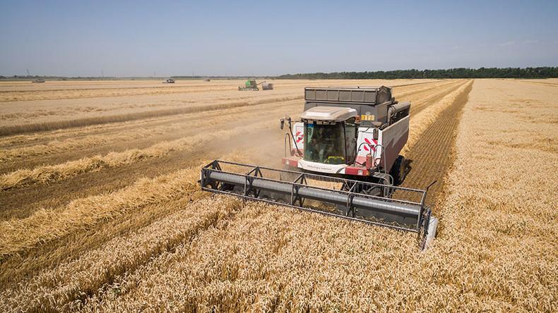 Bumper grain crop in Russia set to break Soviet-era record
