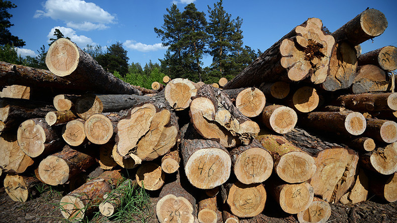Russian lumber industry gains from US-Canada trade row