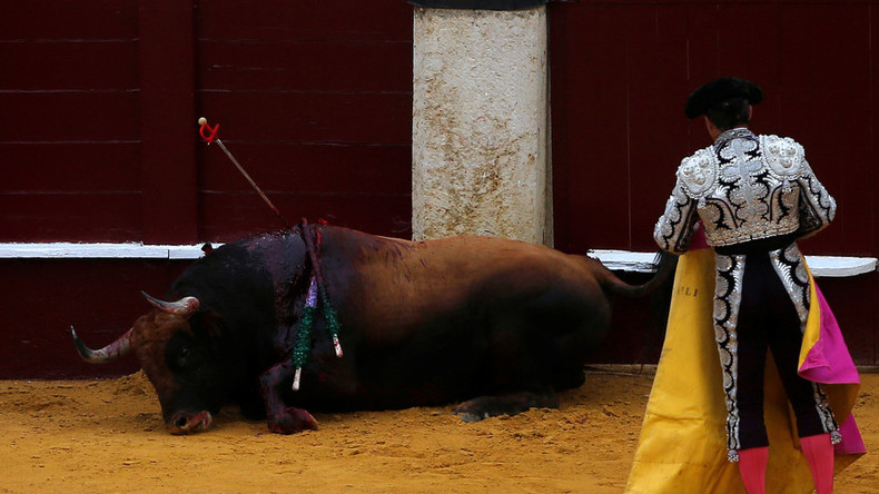 Bull attacks animal rights activists who invaded bullring (VIDEO)