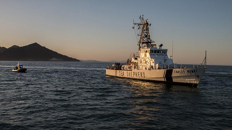 Sea Shepherd blames Japan's satellite surveillance tech for halting anti-whaling mission