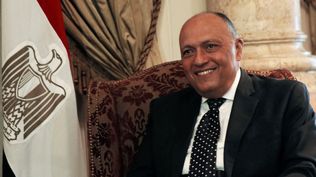 Tough love diplomacy? Ft. Sameh Shoukry, Egyptian Minister of Foreign Affairs