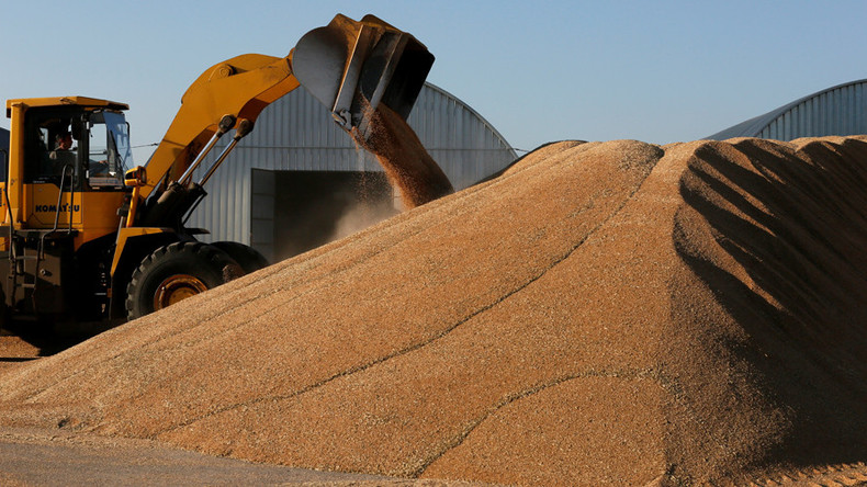 Russia to boost wheat exports on expectations of record harvest