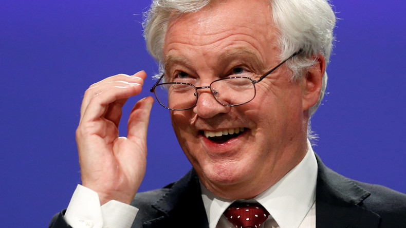 David Davis MP: British blunderer or Brexit mastermind?