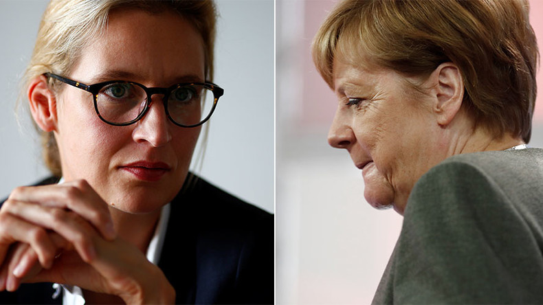 'Leaked' email alleges AfD co-chair called Merkel 'pig & puppet,' stirs pre-election scandal