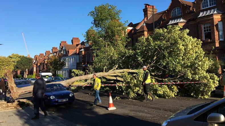 #Wewillrebuild: Britons unleash hurricane humour, as Storm Aileen rips through UK