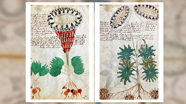 Cryptic Voynich manuscript may actually be guide for medieval women's health