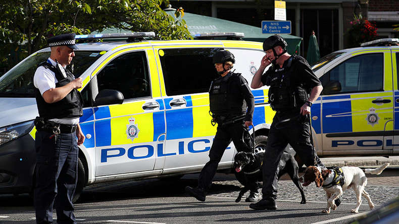 2nd suspect arrested over London Tube terrorist attack – Met Police
