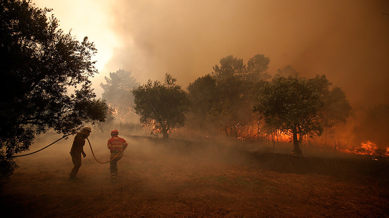 'Hellish' heat waves could become norm in Europe - study