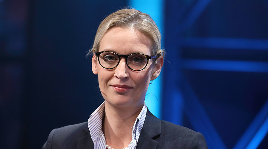 German anti-immigrant politician storms out of live TV debate (VIDEO)
