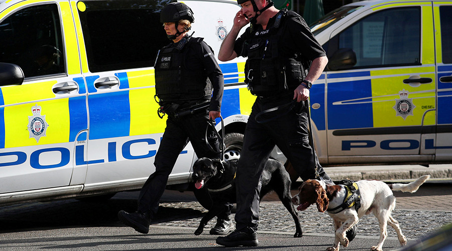 Dogs trained by FBI to sniff out pedophiles join British police force
