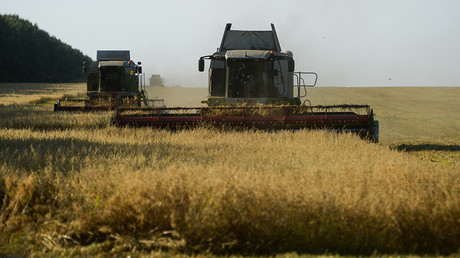 Russia becoming world's bread basket with wheat exports feeding half the planet