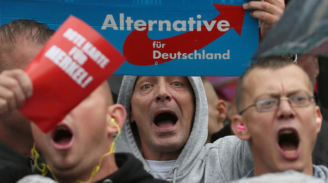 Supporters of the hard-right Alternative for Germany (AfD) party © Reinhard Krause