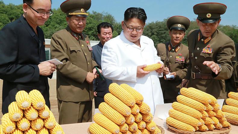 Kim Jong-un says North Korea's economy expanding despite sanctions