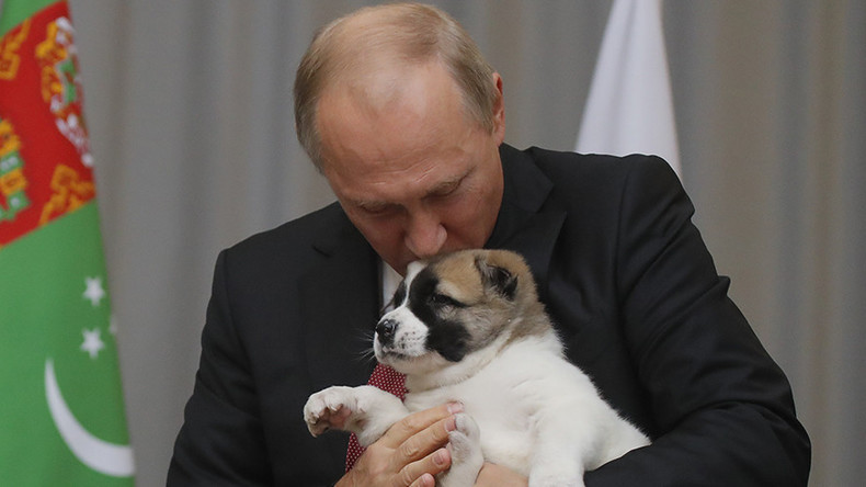 All the president's pets: Putin household celebrates new arrival (VIDEOS)