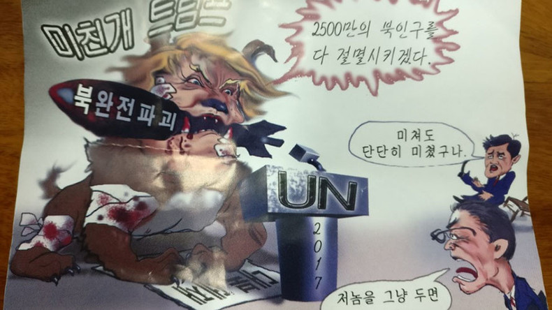 'Mad dog' Trump flyers 'blown in' from N. Korea found in Seoul (PHOTOS)