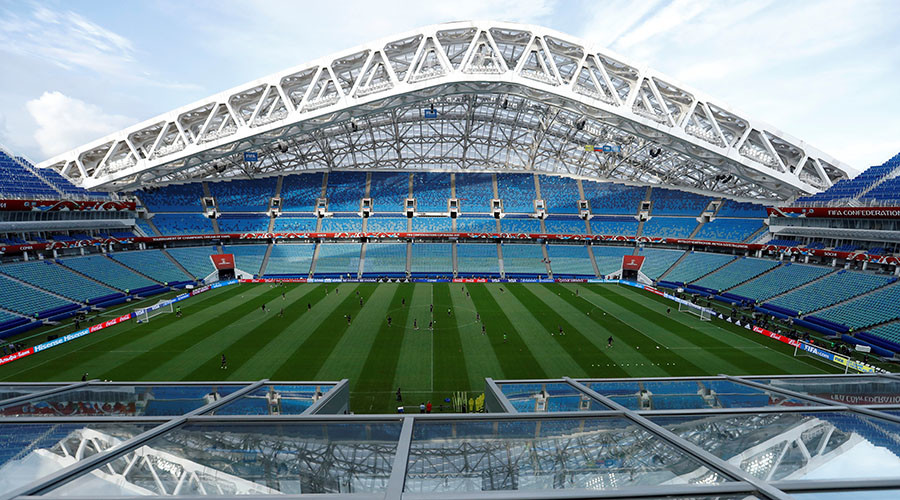 Sochi's Fisht stadium fully ready for World Cup – governor