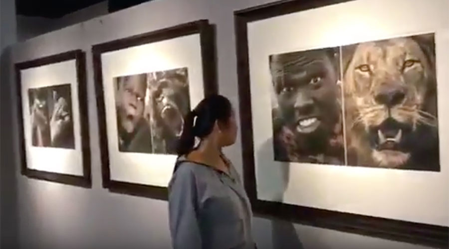'Racist' Chinese exhibit with photos of black people next to animals shut down