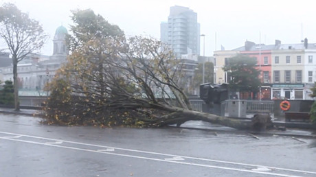 Storm Ophelia aftermath: Gale-force winds hit southwest Ireland