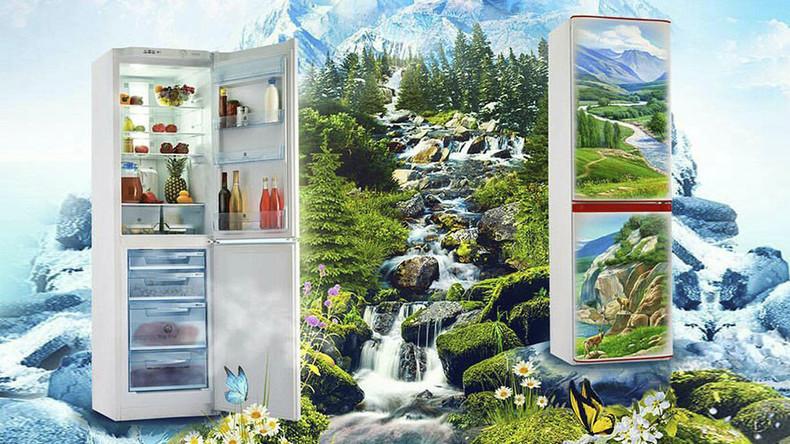 Cool 'singing' designer fridges take Russia by storm