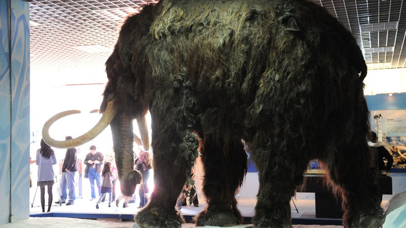 Don't feel bad, woolly mammoths needed their moms just like today's men