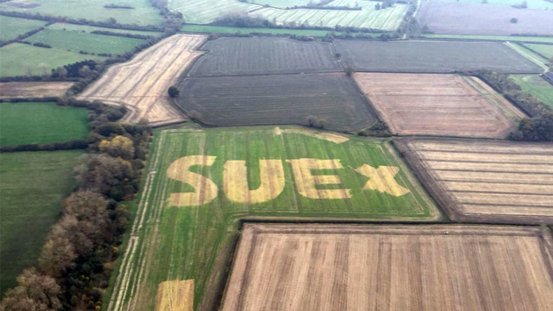 Giant name on a field sends police on search for mystery woman (PHOTOS)