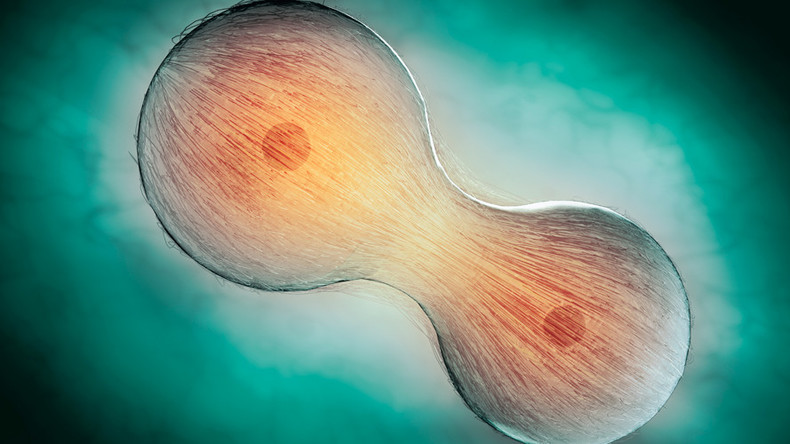 'Like magic': Scientists find way to make old human cells young again