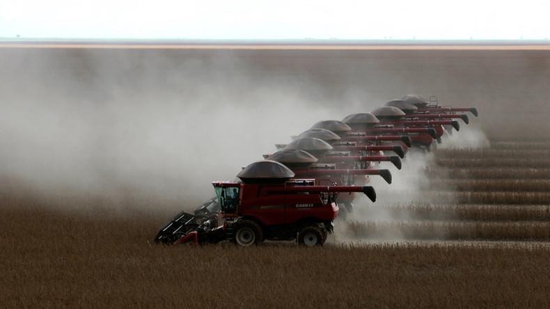 Monsanto sued by Brazilian soybean farmers over GMO seed