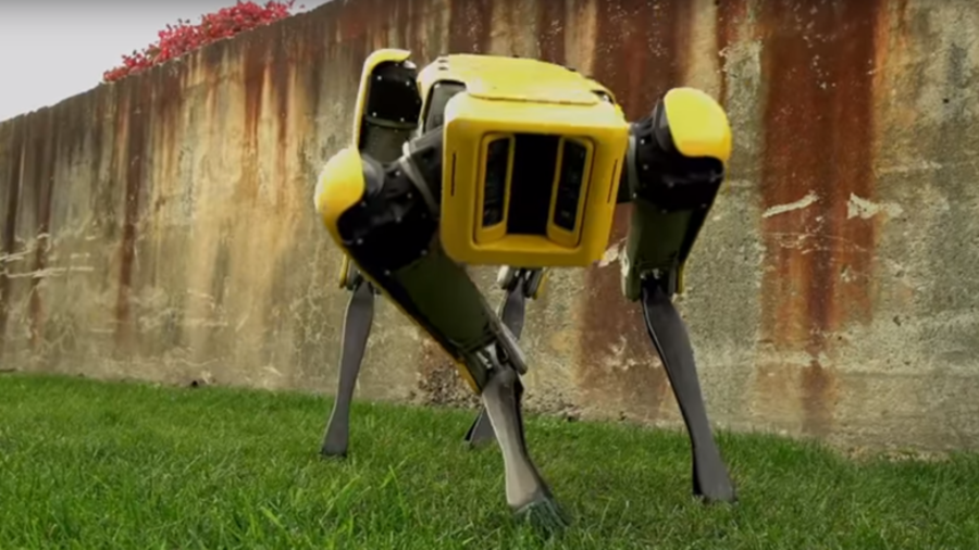 Next generation 'robot dog' moves just like real life pooch (VIDEO)