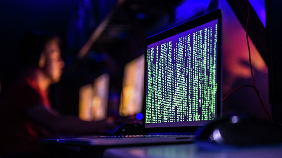 German cyber security agency seeks power to 'hack back' in case of attack