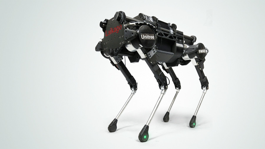 Pet project: Chinese RoboDogs on sale & ready to run on grass with you (VIDEO)