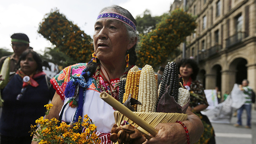 Mexico revokes Monsanto's permit to market GMO soy