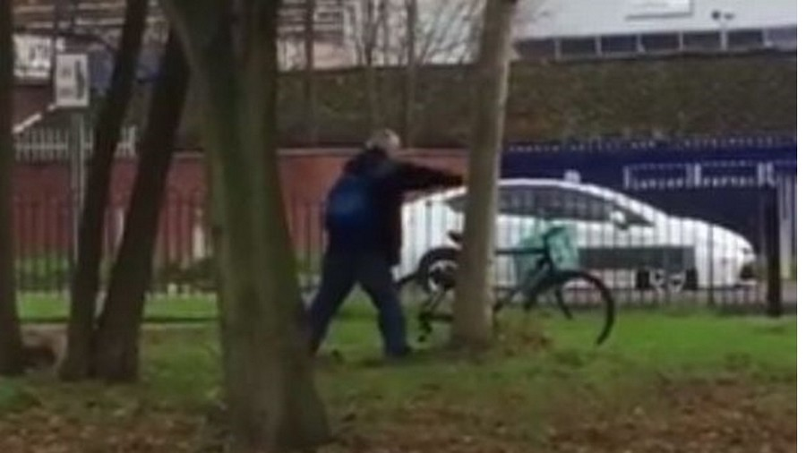 Man vs tree: Poor sap tries to settle score with leafy foe in Leicester (VIDEO)