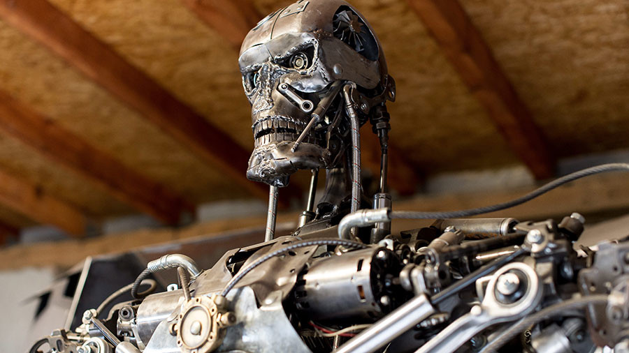 'Robots are not taking over the world': UN panel meets to define 'killer robot' threat (VIDEO)