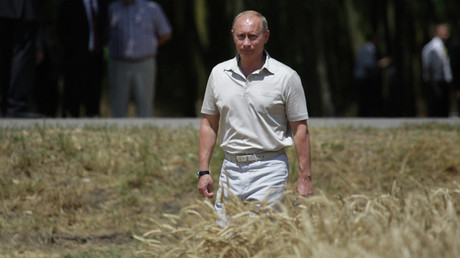 Russia's grain exports to China hit record one million tons