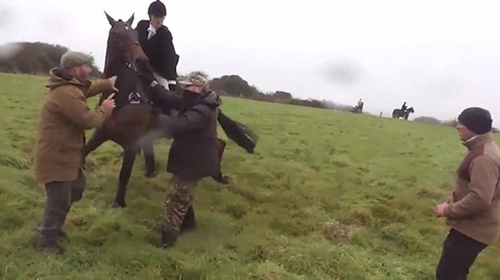 Woman on horseback filmed whipping anti-hunting activist with riding crop (VIDEO)