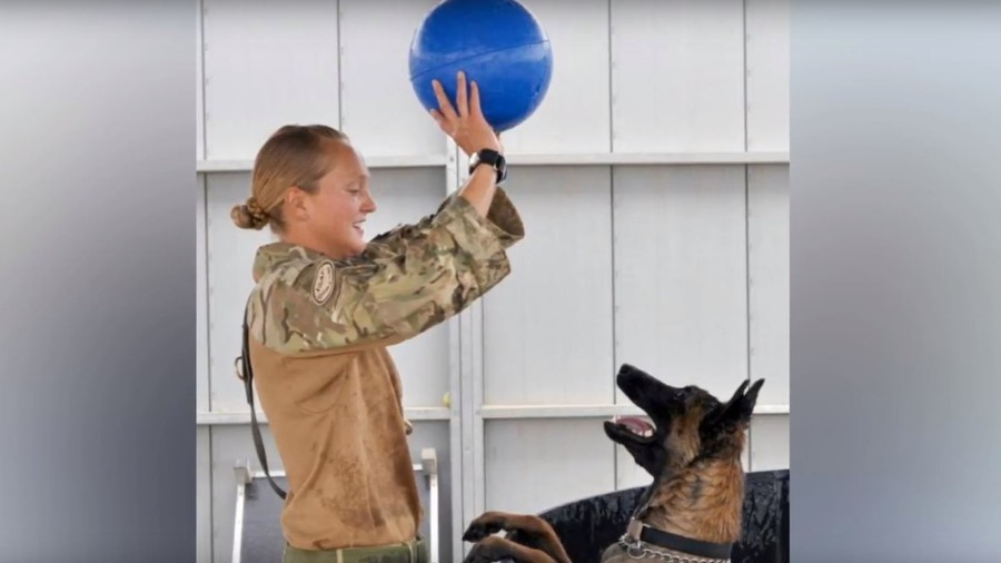 Retired 'Hero' Army Dogs Saved From Being Put Down