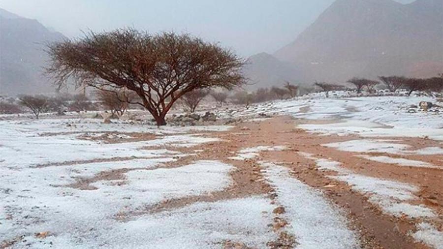 Freak hail & thunderstorms batter UAE desert (VIDEO)