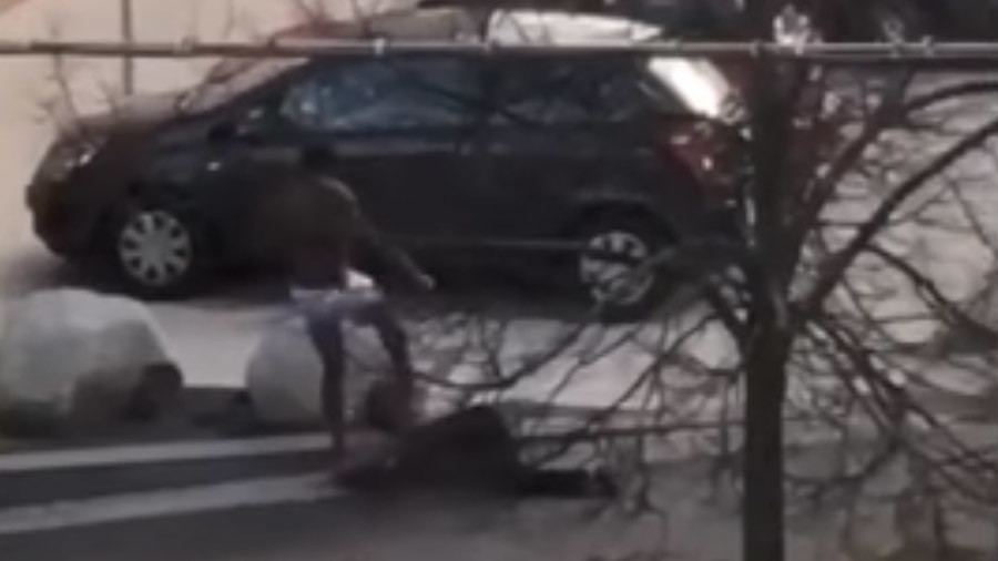 Young man violently beats elderly German woman in broad daylight, motive unclear (SHOCKING VIDEO)