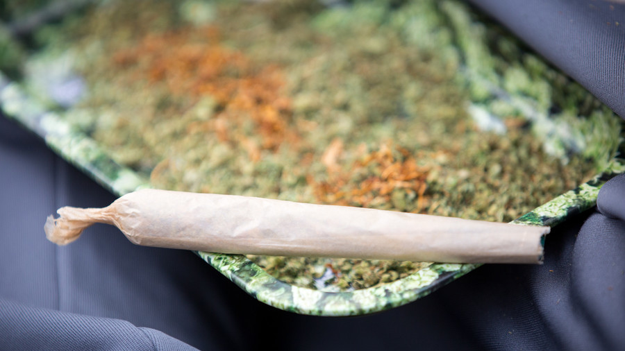 Locking people up for cannabis possession costs taxpayers £13.5mn