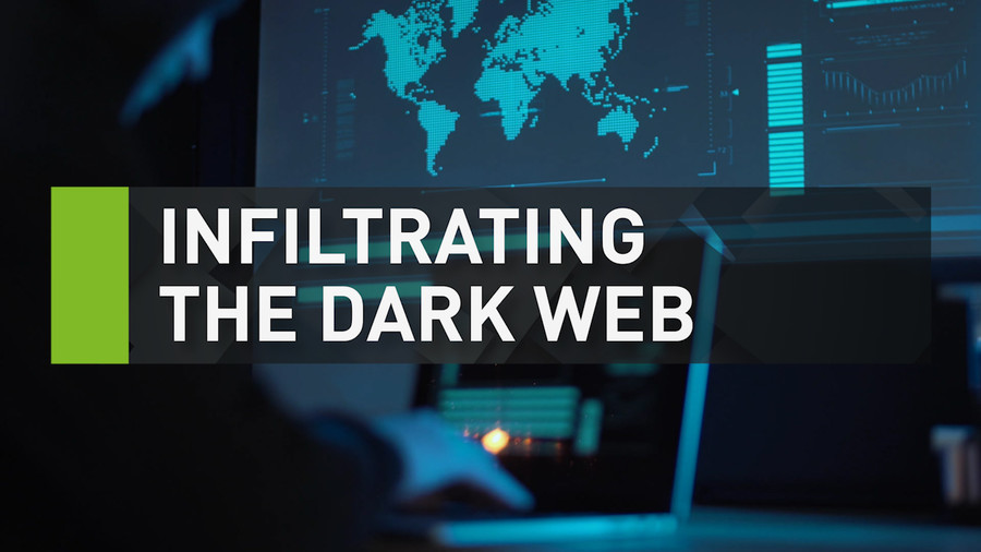 Dark web's key to success nothing sexy, it's just 'good customer service' (VIDEO)