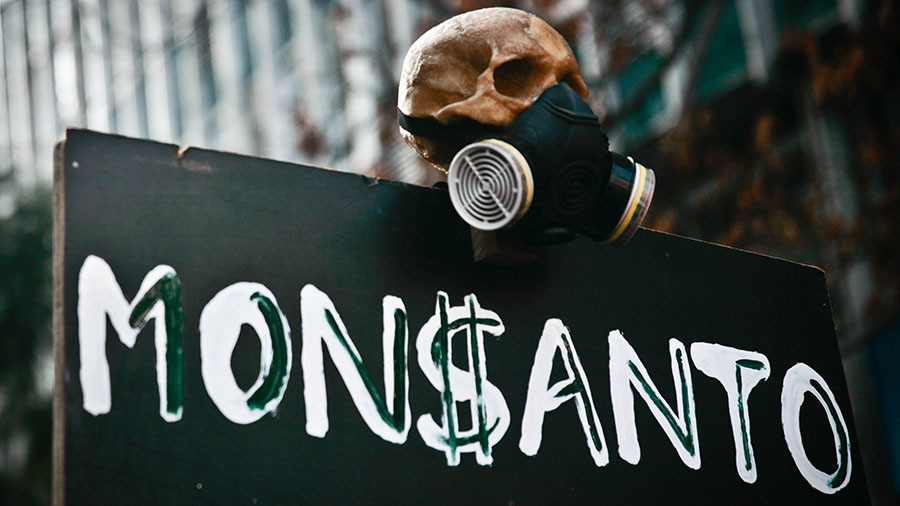 Soy wars: Monsanto faces battle over $40bn market