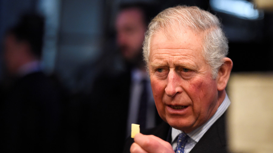 Prince Charles the 'snake-oil salesman': Professor slams royal in new book condemning homeopathy