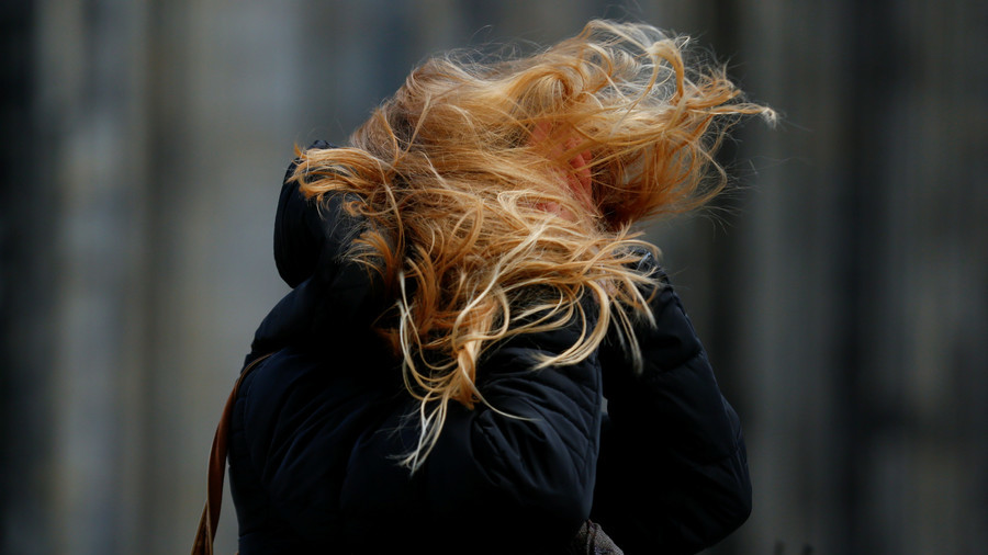 Pedestrians get blown away in shocking footage as 140kph gusts batter Netherlands (VIDEO)