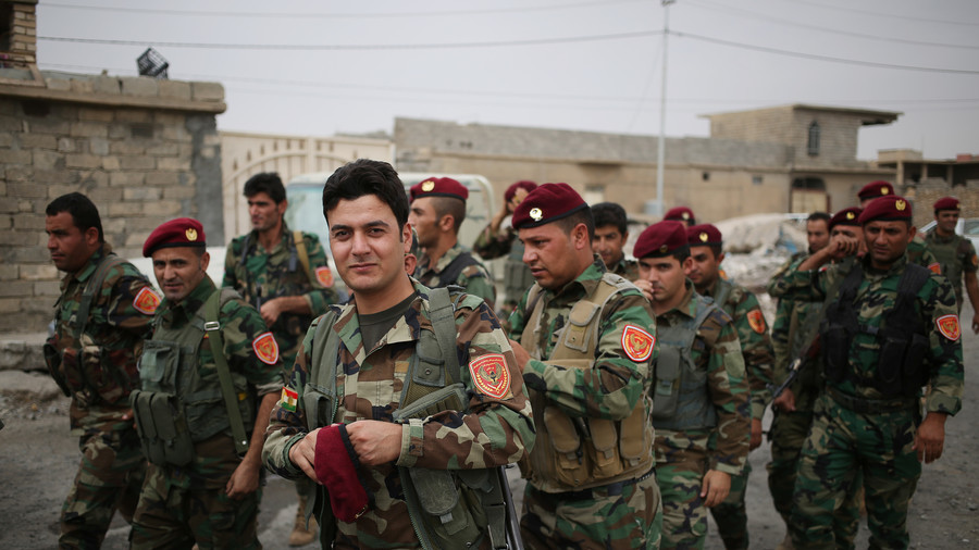 Iraqi Kurds ready to support 'sacred resistance' against Turkey if 'allowed'