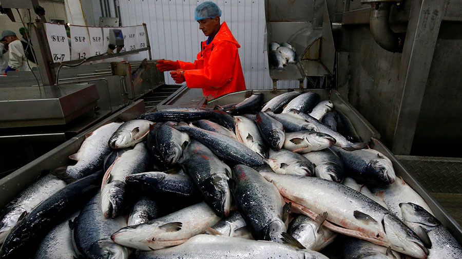 Norway fails to find new buyers for its fish after losing Russian market