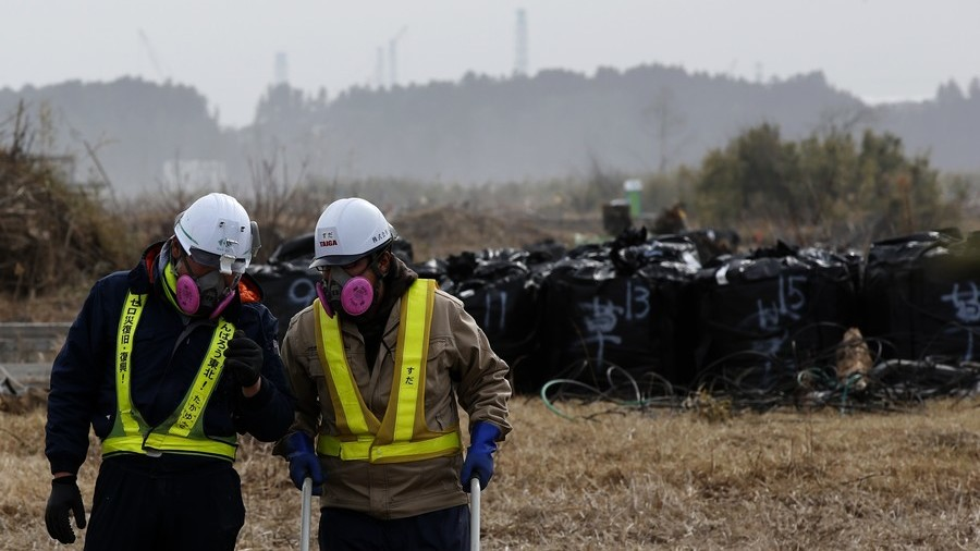 Fukushima operator turned down tsunami simulation plan 9yrs before disaster
