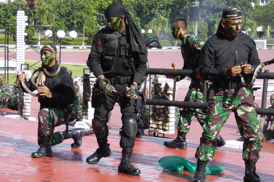 Indonesian Soldiers Drink Snake Blood, Head-Butt Bricks for James Mattis