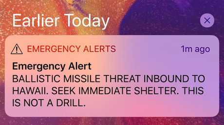 Hawaiians run for shelter, leave messages for loved ones after 'accidental' missile alert (VIDEOS)