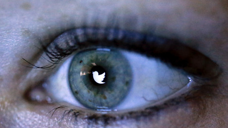 An illustration picture shows the Twitter logo reflected in the eye of a woman in Berlin, November 7, 2013. Fabrizio Benschn