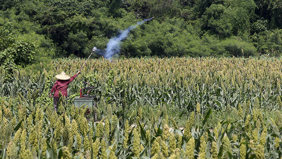 Anti-dumping | Trade probe of USA sorghum a 'normal' investigation